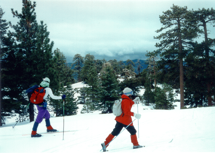 [Skiing on Snow Slide Road between Green Valley Lake and Big Bear Lake]